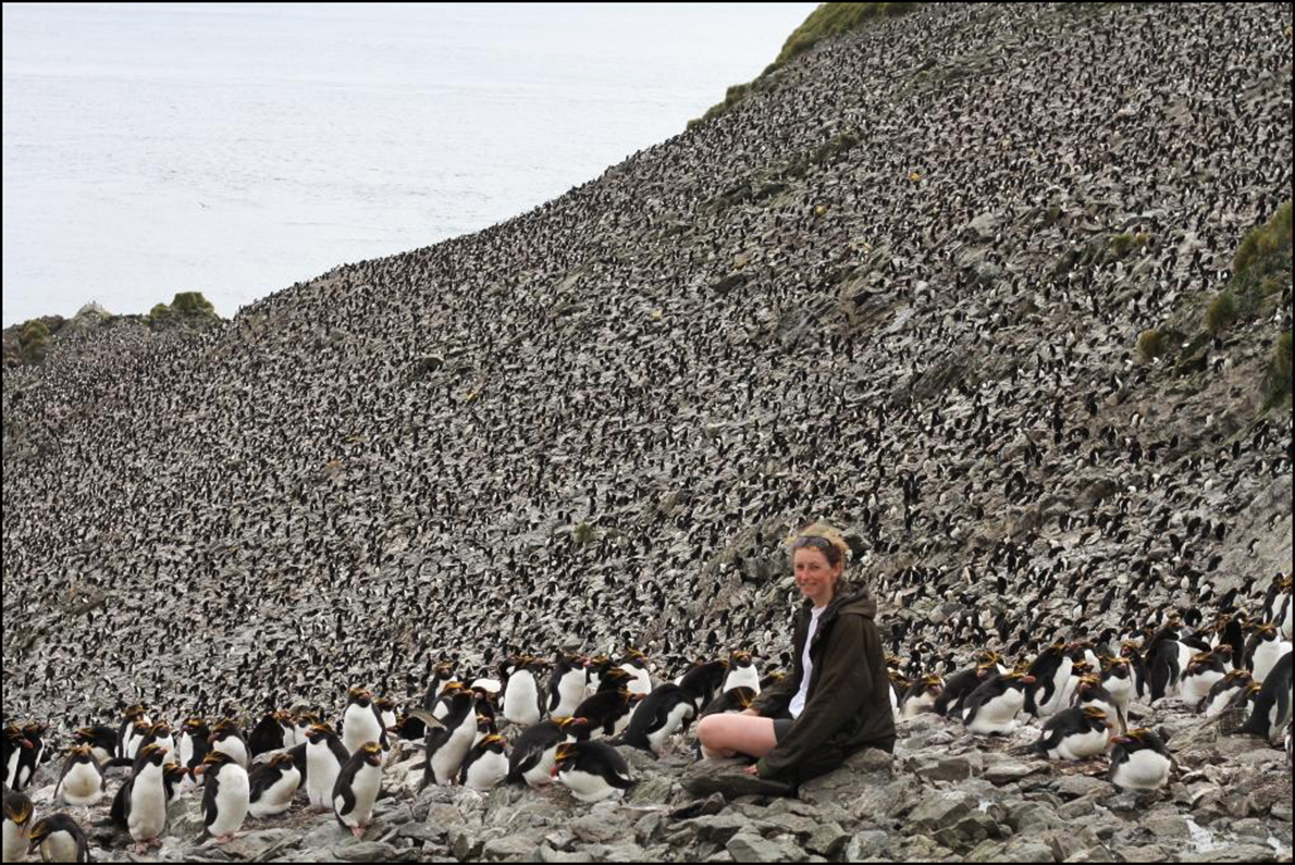 Stephanie Winnard - Me and Some Penguins