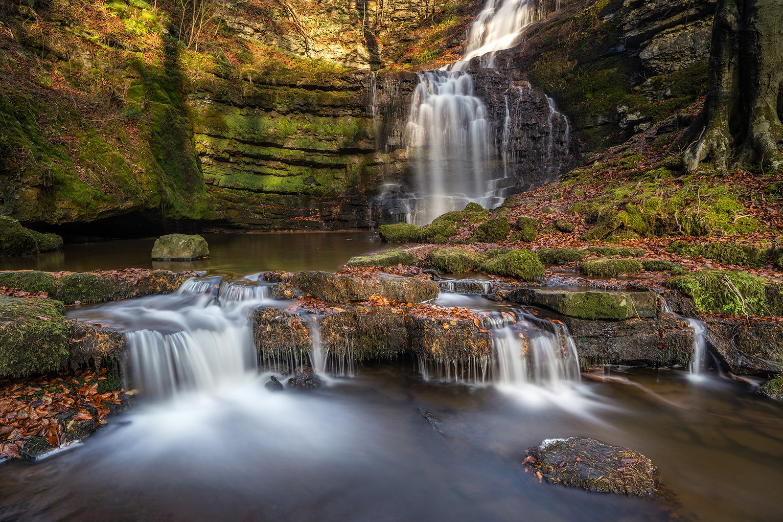 Scaleber Foss in Autumn, by Barbara Clayton