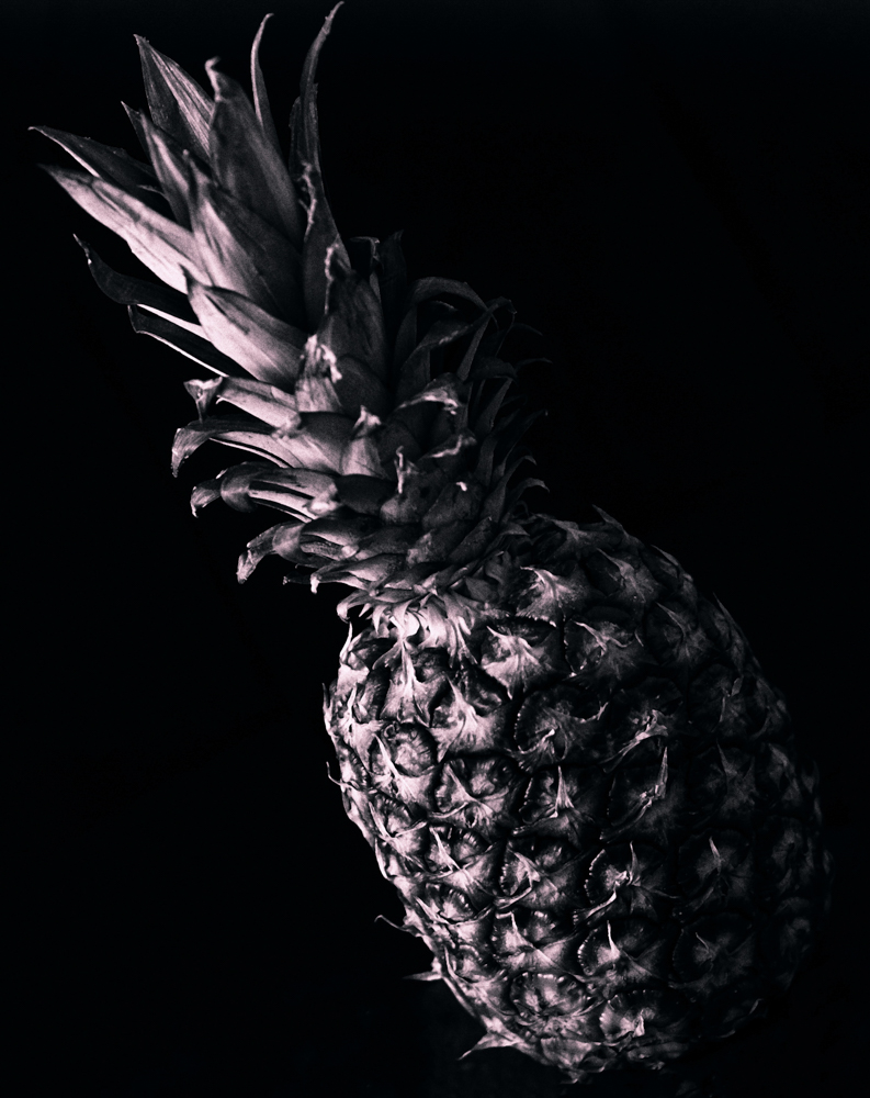 Pineapple, by Janet Coulson