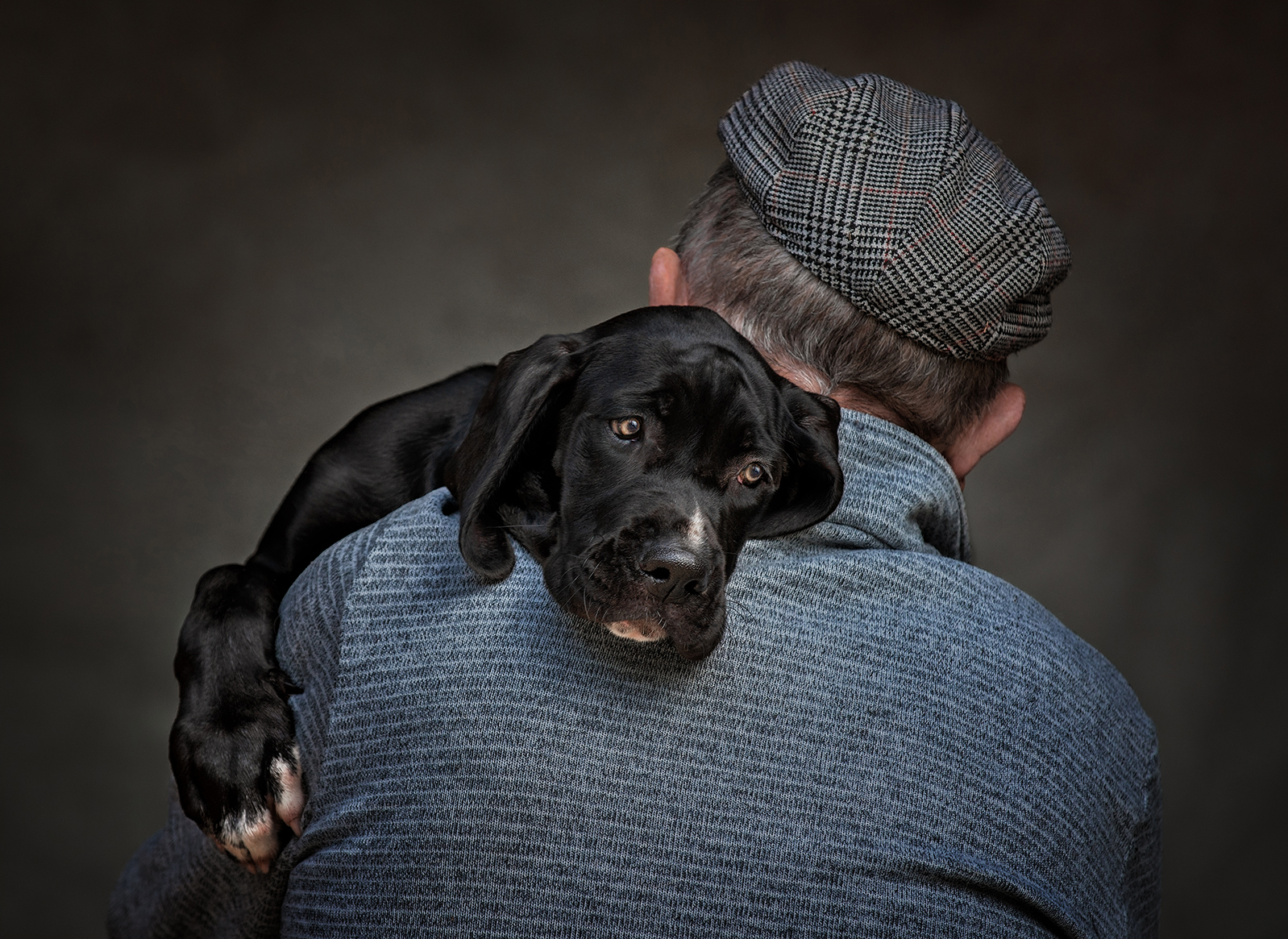 Mans Best Friend, by Angela Carr